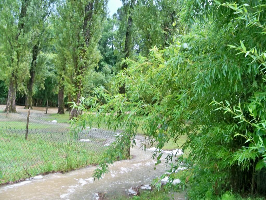 25.07.2014 orages inondattions 014