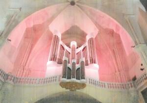 orgue rose 002