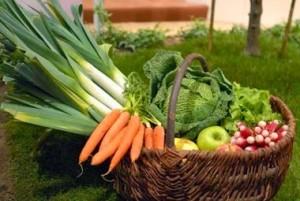 panier-de-legumes